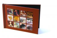 Unibind MyBook Collection 10x15 - Animals Design